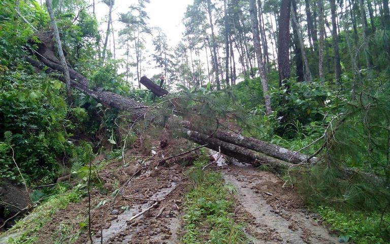Jalan Dermaji - Citunggul tidak bisa dilewati kendaraan karena tertutup timbunan tanah longsor dan pohon tumbang